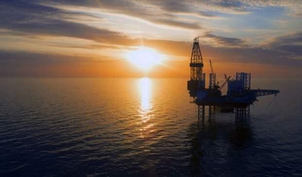 «Нафтогаз» собрался искать нефть игаз вЧерном море