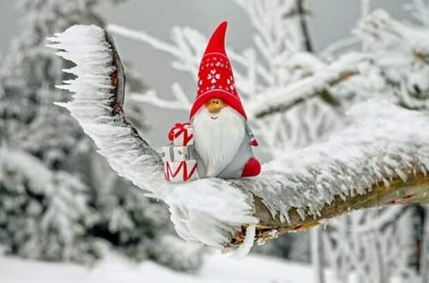 Полезно знать   Как пережить зиму, когда хандра, усталость, мало солнца и много жирной пищи