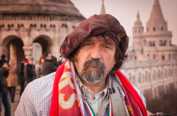 Они не боятся бездомных в мире, венгр, закон, интересно, люди, познавательно, правило, русский