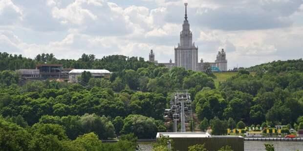 Депутат Мосгордумы Киселева: Зиплайн-трасса на Воробьевых горах будет востребована у туристов