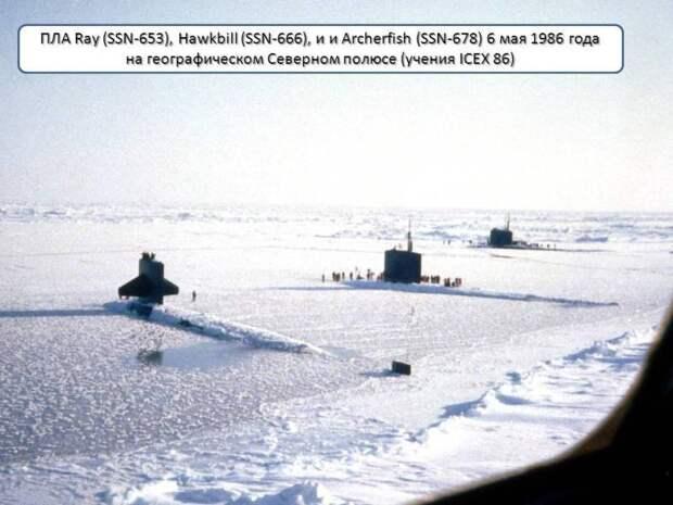 «Торпедная нищета» учений ВМФ РФ «Умка-2021»