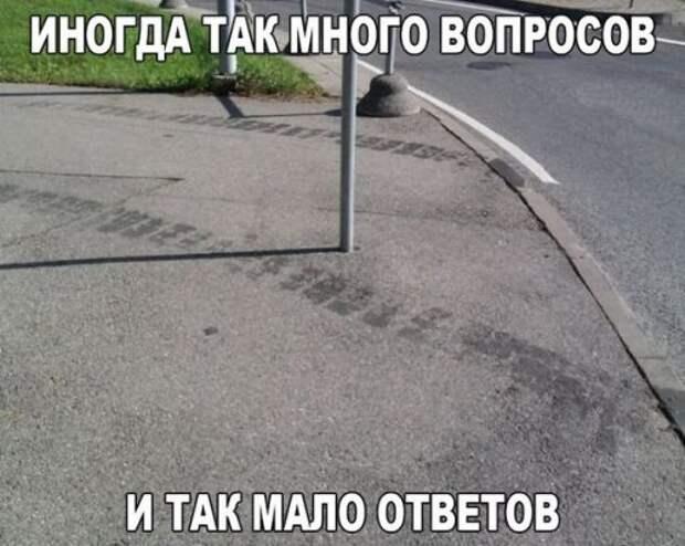 1447924761_avtoprikoly-19