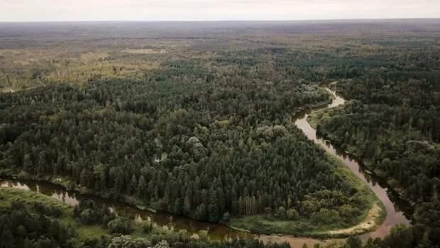 Марийская тайга: путешествие по российской амазонке