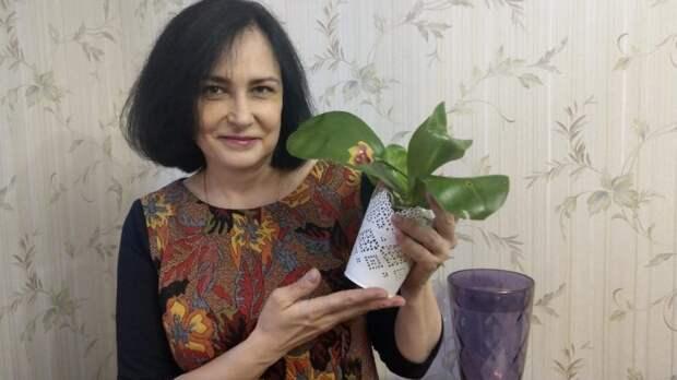 В коллекции орхидей Анны Наумовой около 30 экземпляров / Фото из личного архива