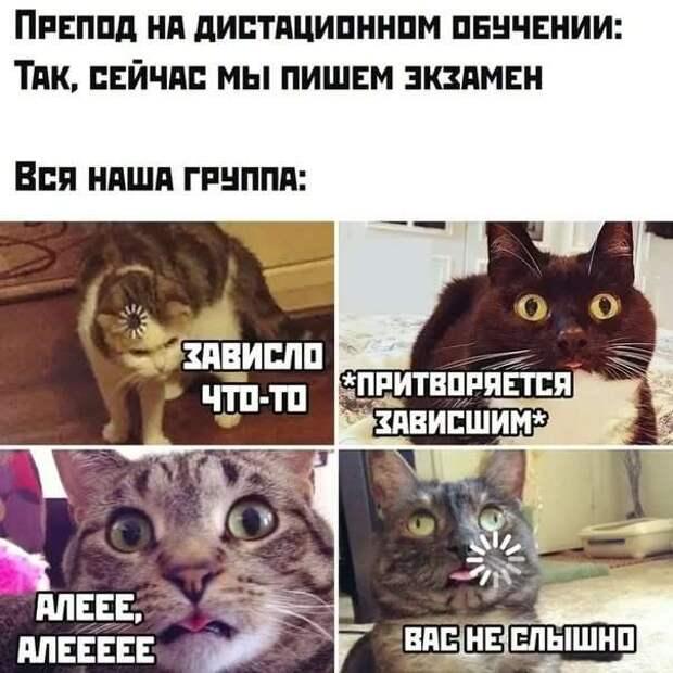 Смешные комментарии. Подборка chert-poberi-kom-chert-poberi-kom-55030703092020-18 картинка chert-poberi-kom-55030703092020-18