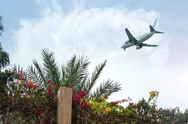 МИД: Полеты на курорты Египта могут возобновиться этим летом