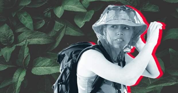 5 причин, почему комары кусают именно вас
