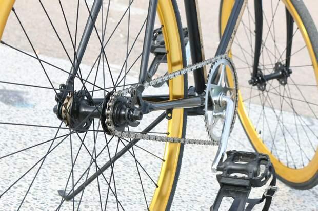 Жители Удмуртии смогут бесплатно перевозить велосипеды в пригородных поездах