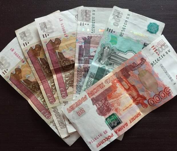 Глава комитета Совфеда разработал законопроект об аресте за неуплату алиментов бывшим супругам