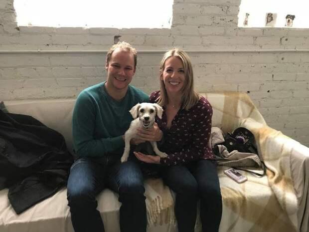 В начале ноября нашлась семья, которая взяла Холланд к себе. Они сразу подружились до и после, помощь бездомным животным, помощь животным, приют для животных, собака, собака - улыбака, стрижка собак, шерсть