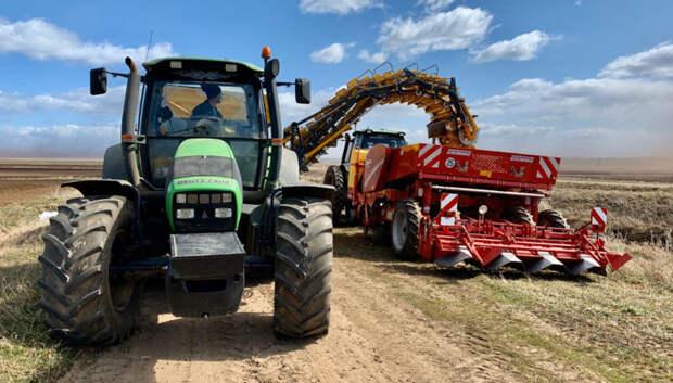 Более 15 тысяч га земель планируют засадить картофелем в Подмосковье в 2020 году