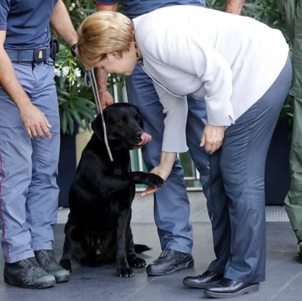 анцлер Германии Ангела Меркель