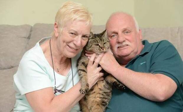 КОШКИН ДОМ. Старейший кот в мире