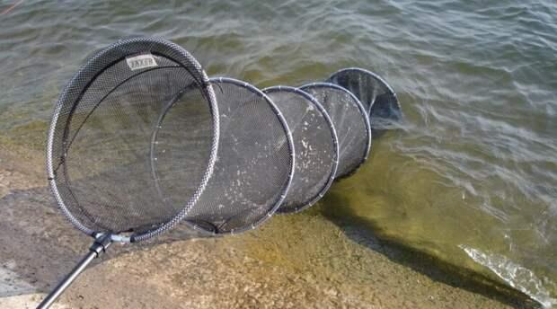 Всё о садках для рыбалки