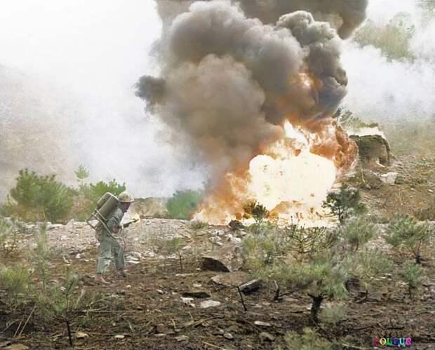 Корейская война в цвете
