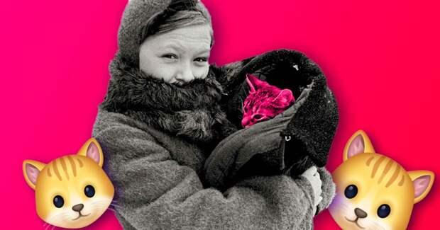 3 факта о том, как кошачья дивизия Ленинграда спасла город