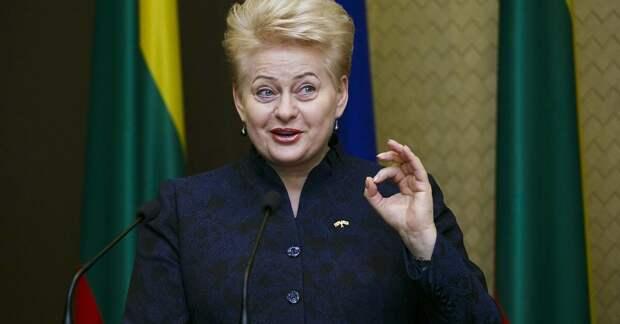В ООН Литве предсказали исчезновение и сравнили её с Сирией