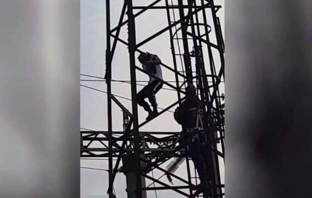 Тарзана с мачты освещения сняли спасатели в Новосибирске