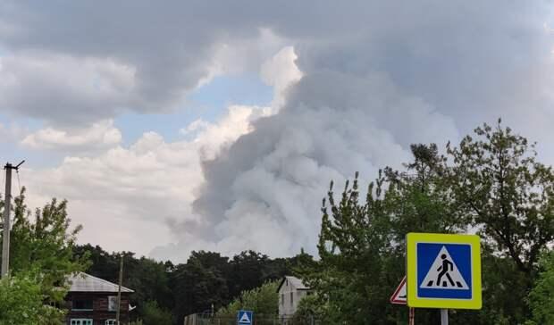 Под Тюменью из-за лесных пожаров сгорело 25 домов вСНТ «Солнышко»