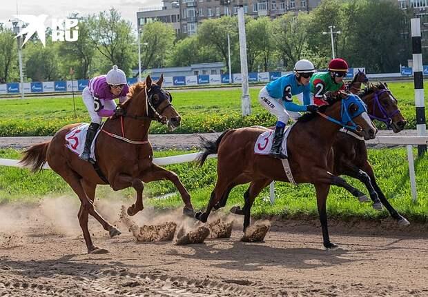 Ипподром коней скакучих: Почему главному московскому аттракциону прошлых лет прочат закрытие