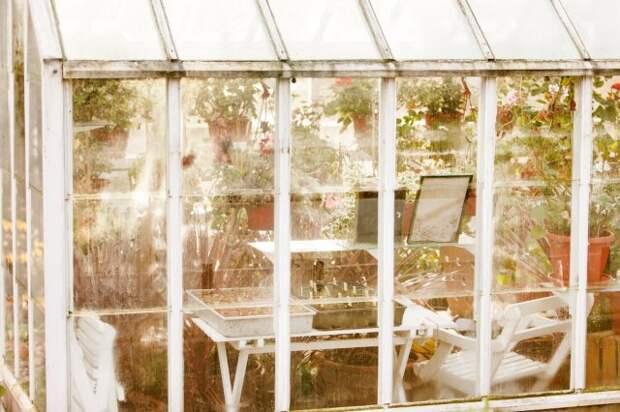 Стеклянный зимний сад