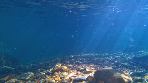 Тело 12-летнего мальчика обнаружили в реке под Архангельском