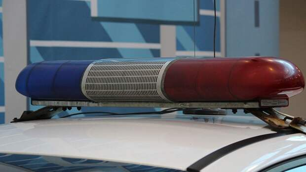 Полиция Перми вернула пенсионерке iPhone и BMW после нападения мигранта