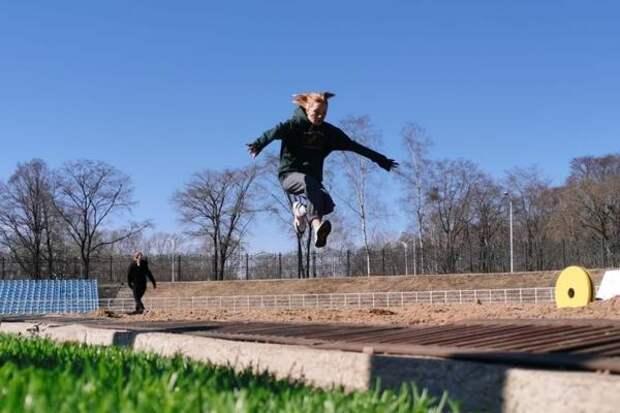 """Команда пятой школы стала лучшей в """"Президентских спортивных играх"""" в Биробиджане"""