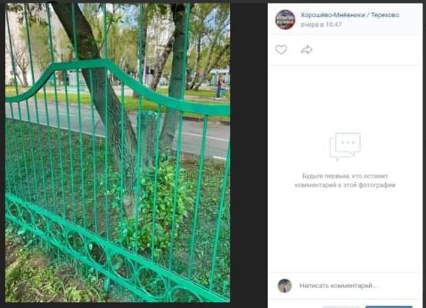 Забор возле Дворца творчества на улице Маршала Тухачевского покрасили безопасной краской – администрация
