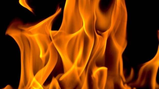 Строительный вагончик загорелся в Петродворцовом районе Петербурга