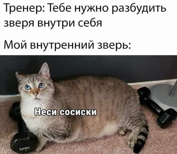 Смешные комментарии. Подборка chert-poberi-kom-chert-poberi-kom-07410623082020-13 картинка chert-poberi-kom-07410623082020-13