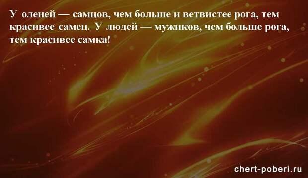 Самые смешные анекдоты ежедневная подборка chert-poberi-anekdoty-chert-poberi-anekdoty-32290623082020-9 картинка chert-poberi-anekdoty-32290623082020-9