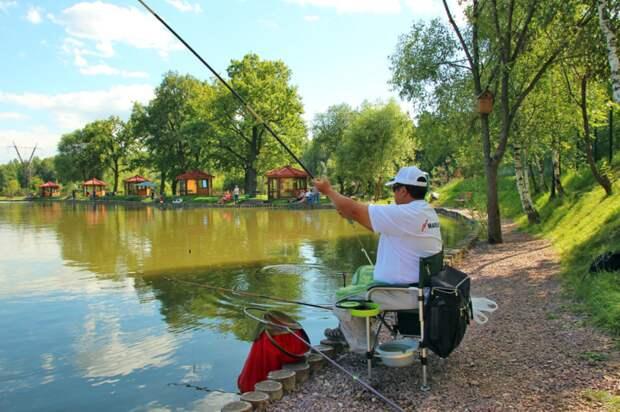 Как на рыбалке законно заработать деньги — 5 первых простых шагов
