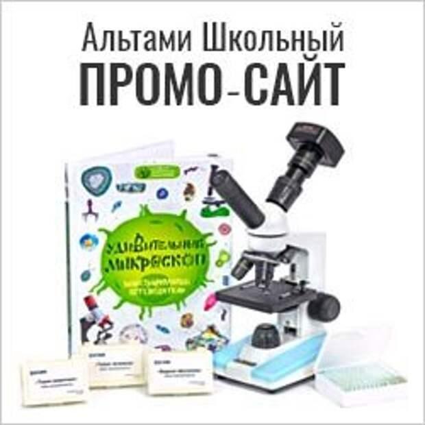 Промо-сайт Школьный