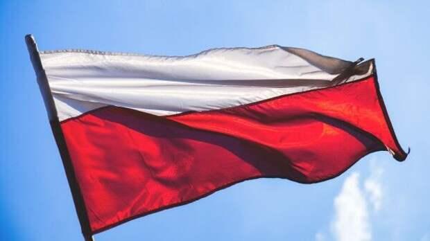 Репутация Польши в ФРГ подорвалась из-за модернизации германских танков Leopard