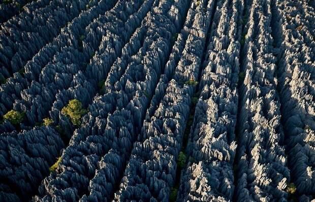 Цинги-де-Бемараха - странные минеральные леса, заповедник расположенный примерно в 80 километрах от западного побережья Мадагаскара завораживающе, земля, интересное, красота, пейзажи, природа, фотомир