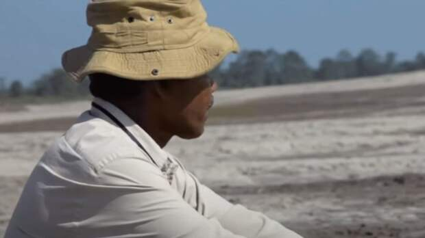 Мужчина из Индии просто сажал деревья, а теперь его знает весь мир. Рассказываю его невероятную историю