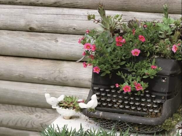 печатная машинка с цветами