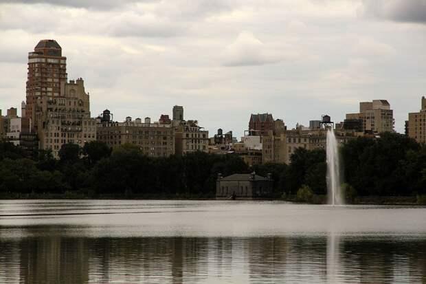 Прогулка по Центральному парку Нью-Йорка
