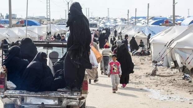 Сирия новости 15 ноября 07.00: США проводят допросы боевиков ИГИЛ*, «Тахрир аш-Шам» атакует в Идлибе