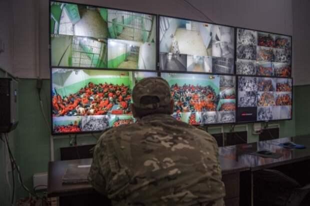 Игиловская сотня: МВД ФРГ назвало число «серьёзно» подготовленных боевиков