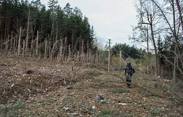 Президент Чехии: Взрывы воВрбетице моги быть попыткой скрыть недостачу оружия