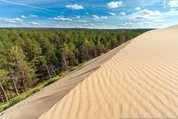 Сибирская пустыня