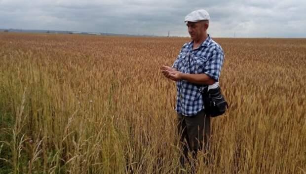 Подольское сельхозпредприятие ввело в оборот 130 гектаров неиспользуемых земель