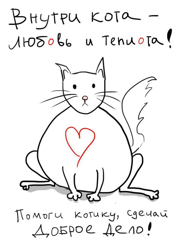 Возьмите самого замечательного кота домой!