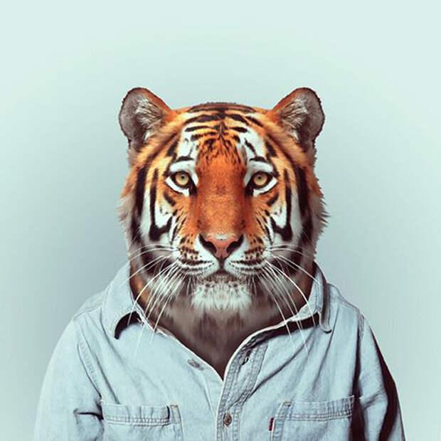 Животный стиль