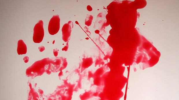 Правоохранители назвали возможную причину убийства семьи в Щелкове