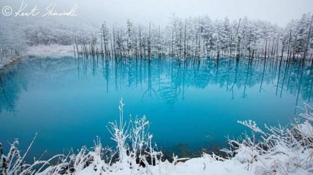 Голубой пруд в Хоккайдо (5 фото)