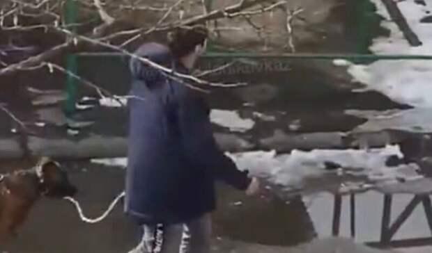 ВСеверной Осетии задержали мужчину, избившего собаку