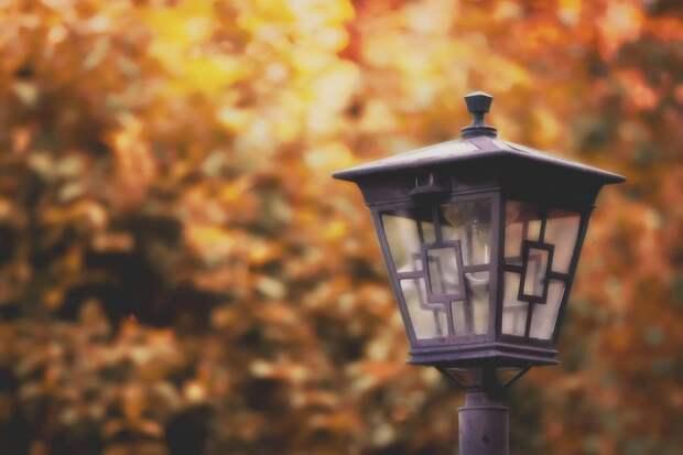 Уличные фонари подключат в сквере у Амбулаторного пруда до конца недели